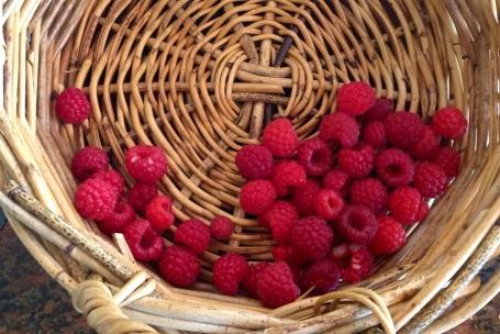 Raspberry fruit, yum!