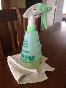 Spray bottle with vinegar