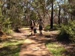 Bush walking