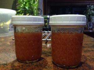 Two bottles of tomato sauce