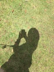 Bulgy silhouette