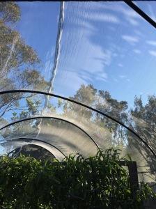 Centre seam in the canopy