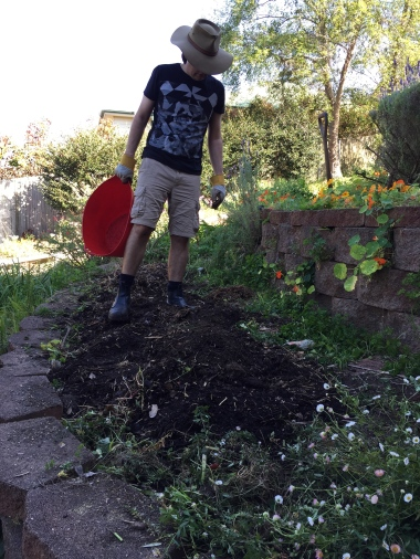 Adding compost to the garden bed