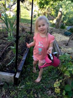 Evie is helping me plant some bush bean seeds.