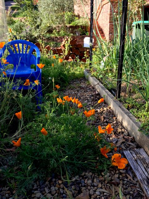 Moving A Raised Garden Bed Simple Crafty Life